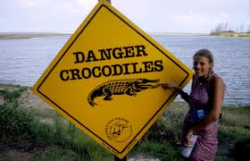 danger crocadile