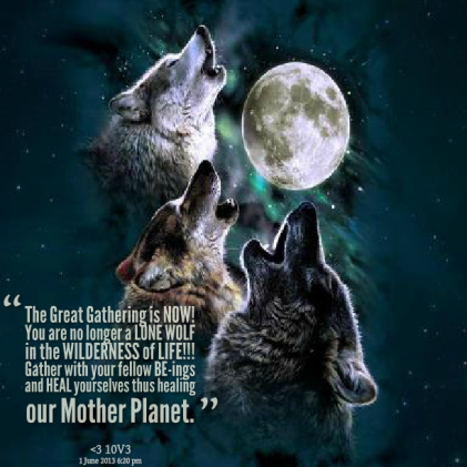 14608-the-great-gathering-is-now-you-are-no-longer-a-lone-wolf-in