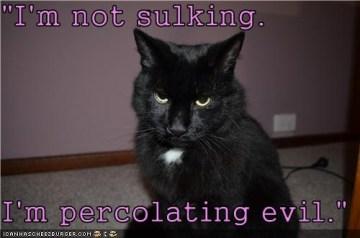 sulking meme