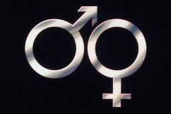 Male-Female-Symbol