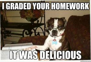 dog-ate-my-homework-funny-pictures